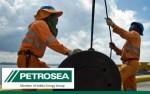 Lowongan Kerja PT Petrosea Tbk Hingga 15 Juli 2016