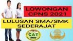 Catat!! Daftar Formasi CPNS Yang Sering Dibuka Untuk Lulusan SMA/SMK Sederajat